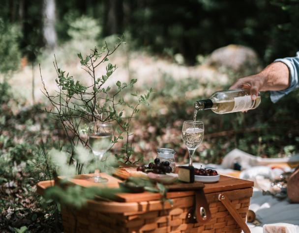 Reizen Reis door de wijn