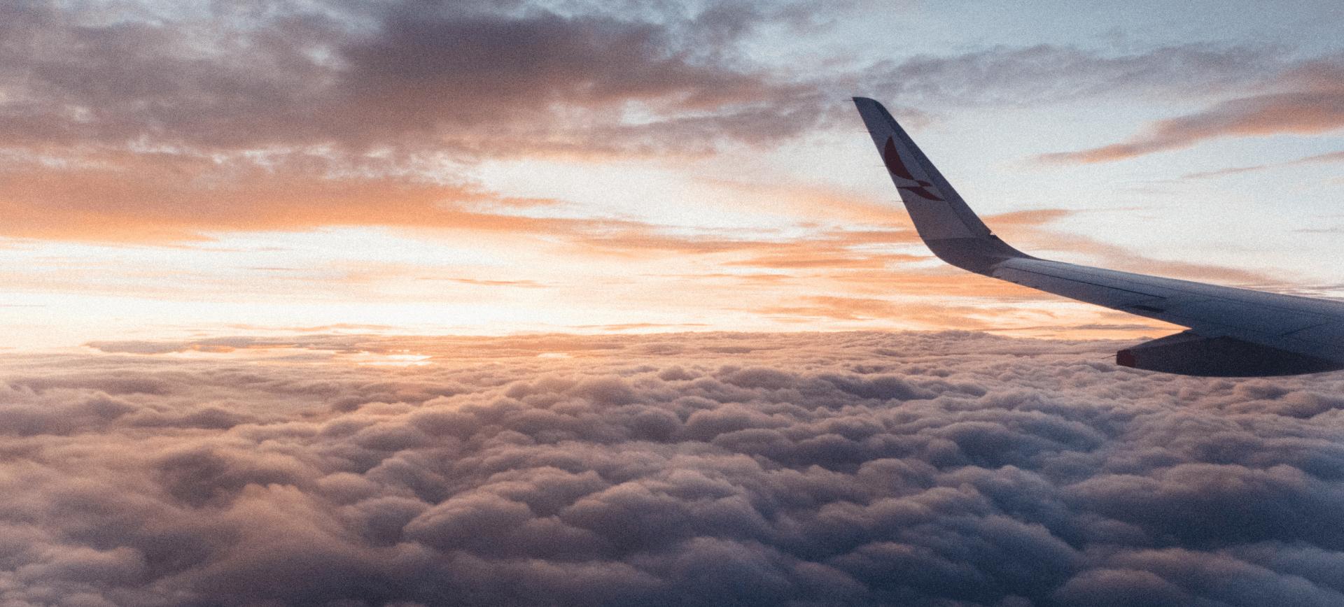 Vliegtuig Reis door de wijn